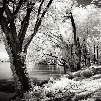 https://imgc.allpostersimages.com/img/posters/spring-on-the-river-square-ii_u-L-Q10PR3L0.jpg?p=0