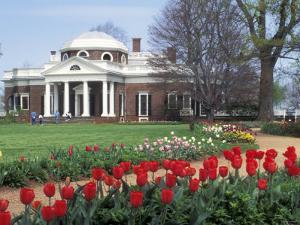 Spring Tulips at Monticello, Thomas Jefferson's Home in Charlottesville, Virginia