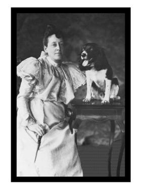 Springer Spaniel and Woman