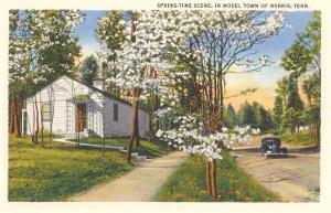 Springtime in Norris, Tennessee