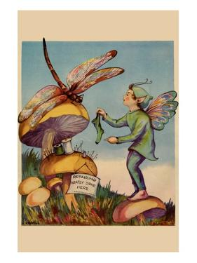 Sprite Needs His Socks Darned By a Dragonfly Who Is Sitting On a Mushroom
