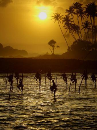 Sri Lankan Fishermen Sit Perched on Stilts Fixed into the Ocean Floor