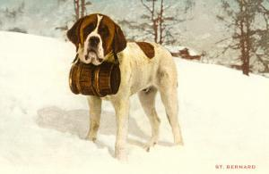 St. Bernard with Rescue Keg