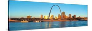 St. Louis Arch and Skyline