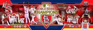 St Louis Cardinals Panoramic Photo