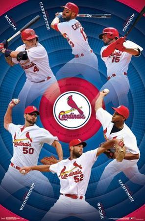 St. Louis Cardinals - Team 17