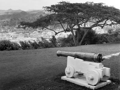 https://imgc.allpostersimages.com/img/posters/st-lucia-cannon_u-L-Q107AAH0.jpg?artPerspective=n