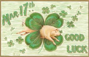 St. Patrick's Day, Pig and Shamrock