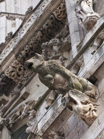 https://imgc.allpostersimages.com/img/posters/st-peter-s-cathedral-in-regensburg-germany_u-L-PHAFC50.jpg?p=0