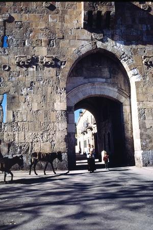 https://imgc.allpostersimages.com/img/posters/st-stephen-s-gate-jerusalem-israel_u-L-PLTBYK0.jpg?p=0