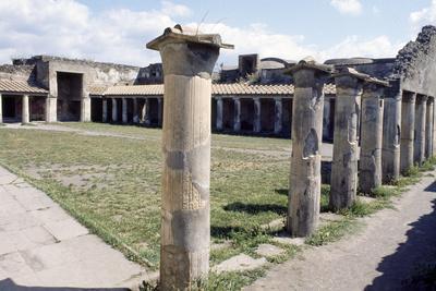 https://imgc.allpostersimages.com/img/posters/stabian-baths-pompeii_u-L-PPQB5S0.jpg?p=0