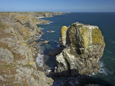 https://imgc.allpostersimages.com/img/posters/stack-rocks-pembrokeshire-coast-national-park-wales-united-kingdom-europe_u-L-PFNCN20.jpg?p=0