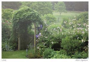 Arbor Mist by Stacy Bass
