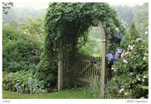 Arbor by Stacy Bass