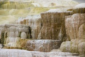 Abstract Landscape of Rock Terraces at Mammoth Hot Springs by Stacy Gold