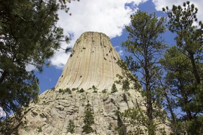 Devil's Tower Rock Formation Rises High Above the Forest Below by Stacy Gold