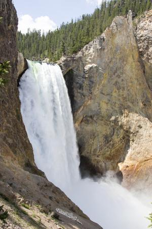 Lower Yellowstone Falls Cascades over Steep Cliffs by Stacy Gold