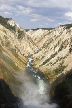 Overlook of the Upper and Lower Falls of Yellowstone by Stacy Gold