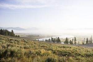 Scenic Overlook of Fog over the Hayden Valley by Stacy Gold