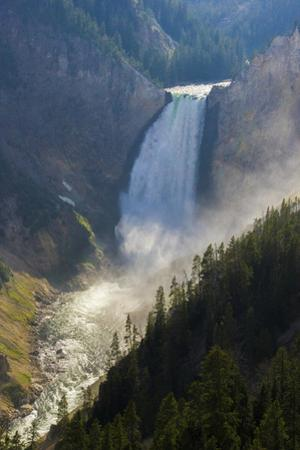 Scenic View of Yellowstone Falls by Stacy Gold