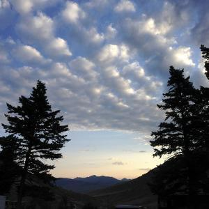 Sky and Clouds over Silhouetted Trees at Mammoth Hot Springs Area in Yellowstone by Stacy Gold