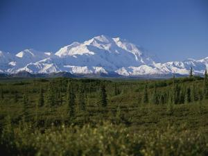 View of the Tallest Mountain in North America, Mt. Mckinley by Stacy Gold