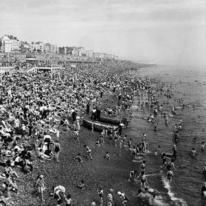 Brighton by Staff