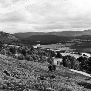 View of the Countryside in Deeside. 28/08/1959 by Staff