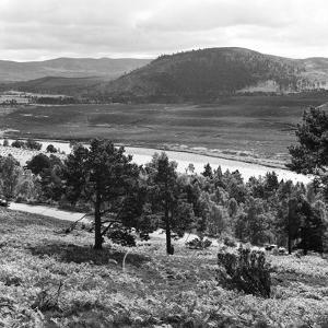 View of the Deeside Country, Aberdeenshire. 28/08/1959 by Staff