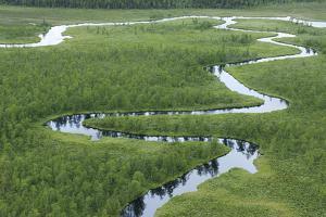 River's Journey by Staffan Widstrand