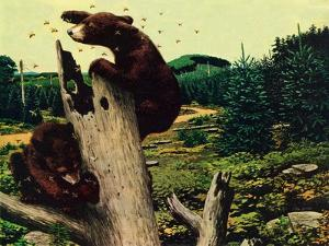 Bears and Honey by Stan Galli