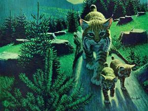 Bobcat and Kittens by Stan Galli