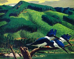 Kingfishers by Stan Galli