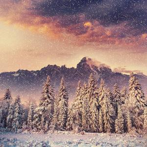 Magical Winter Landscape, Background with Some Soft Highlights and Snow Flakes by standret