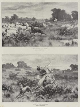 A Bill of Fare by Stanley Berkeley