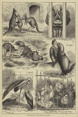 Easter Monday at the Zoological Gardens by Stanley Berkeley