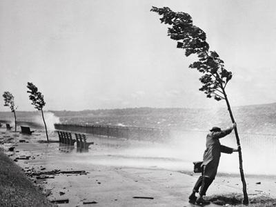 Man Holding onto Tree during Hurricane Carol by Stanley Hall