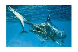 Black Marlin and Two Wahoo by Stanley Meltzoff