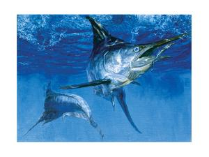 Blue Marlin In: Double Header, 1976 by Stanley Meltzoff