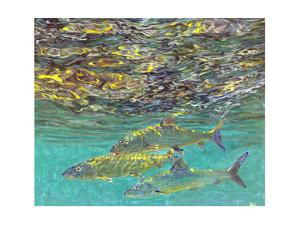 Bonefish and Shrimp Bait by Stanley Meltzoff