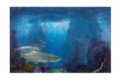 Tarpon at Carvel Rock by Stanley Meltzoff