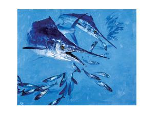 Two Spearfish and Mackerel by Stanley Meltzoff