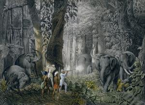 Lithograph of an Elephant Hunt After Graf Andrasy by Stapleton Collection