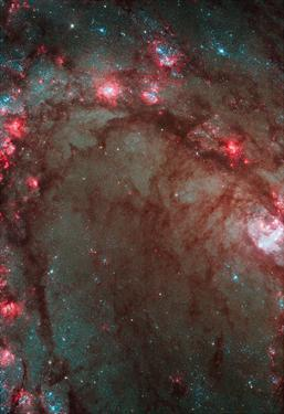 Star Birth in Galaxy M83 Hubble Wide Field Camera 3 Space Photo Poster Print