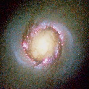Star Birth In Galaxy NGC 4314