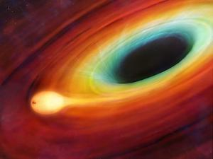 Star Distorted by Supermassive Black Hole