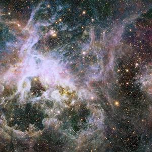 Star Formation in the Tarantula Nebula