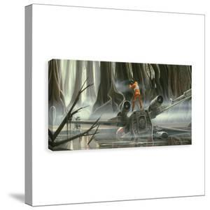 Star Wars Skywalker Dagobah Crash Printed Canvas