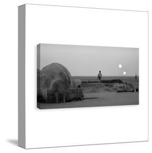 Star Wars Tatooine Printed Canvas