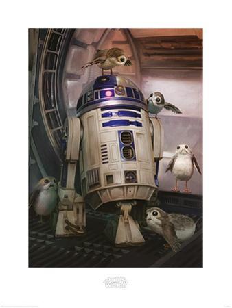 Star Wars: The Last Jedi - R2-D2 & Porgs